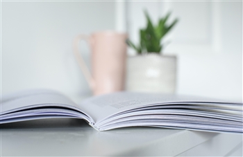A slim book in front of a vase with a plant and a mug. Photo by Rich Tervet via Unsplash