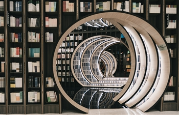 Books and doors in a library. Photo courtesy of vnwayne fan via Unsplash
