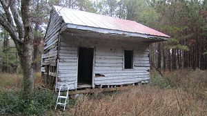 A slave cabin from the early 1800s at Point of Pines Plantation on Edisto Island in South Carolina. National Museum of African American History and Culture