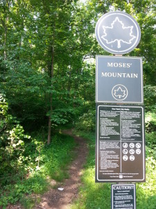 "The ""Moses' Mountain"" hiking trail preserves the former Richmond Parkway right-of-way as public parkland (Patrick Nugent, 2015)."