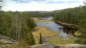 Elaborate system of beaver ponds in Algonquin Provincial Park, Ontario.