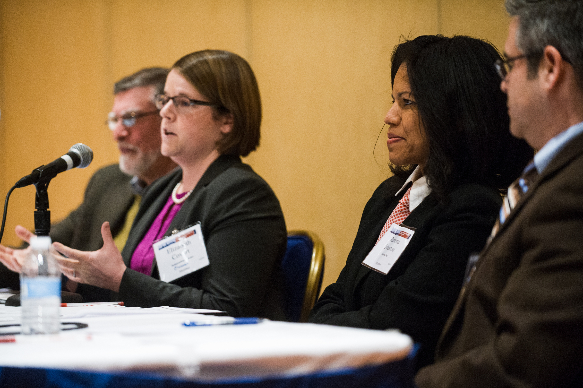 "Photo by Marc Monaghan. <p>Walter M. Licht, Elizabeth Covart, Ramona Houston, and R. Darrell Meadows discuss the topic ""Getting to the Malleable PhD"" at the annual meeting."