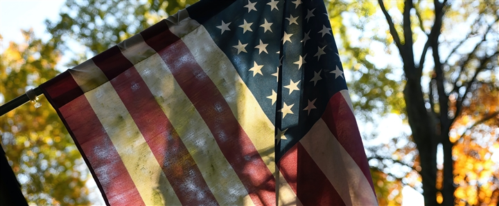 A partly transparent American flag hanging from a tree, with more trees behind it. Photo by Robin Jonathan Deutsch via Unsplash